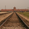 """Auschwitz"" by Deborah Dwork and Robert Jan Van Pelt"